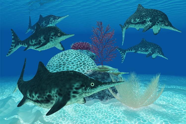 Ichthyosaurus adalah karnivora reptil raksasa laut dari zaman Trias dan Jurasik.